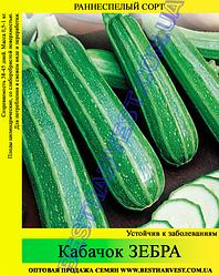 Семена кабачка Зебра 0.5 кг