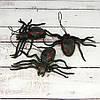 Паук резиновый 10х6см черный