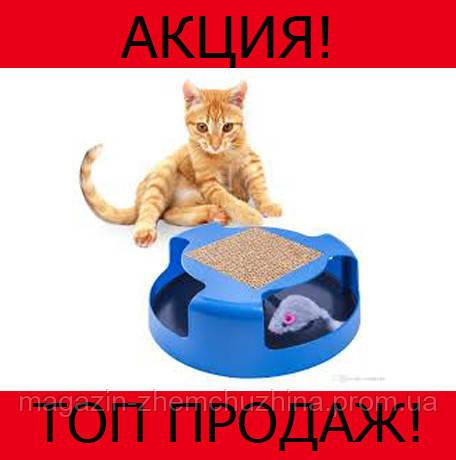 Игрушка для кошек Oxgord Cat Mouse Chase!Хит цена