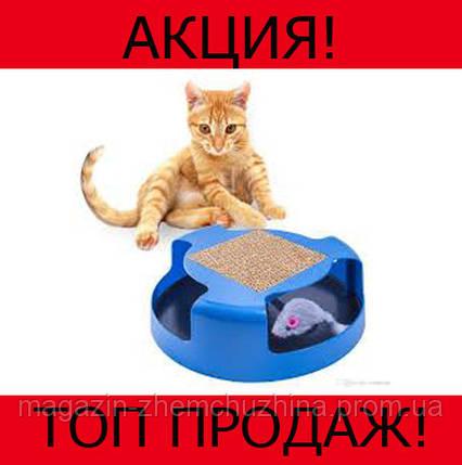 Игрушка для кошек Oxgord Cat Mouse Chase!Хит цена, фото 2