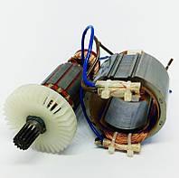 Якорь и статор на сетевой шуруповерт ИжМаш DS 1200/2 (ML-AD 02)