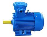 Электродвигатель взрывозащищенный АИМ132S4 7,5 кВт 1500 об/мин, фото 3