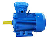 Электродвигатель взрывозащищенный АИМ200М4 37 кВт 1500 об/мин, фото 3
