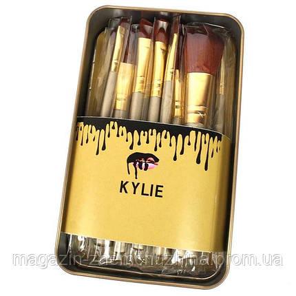 Набор кистей для макияжа Kylie большие серебро 12 шт.!Хит цена, фото 2