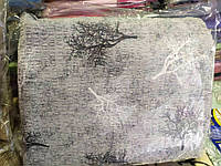Сімейна постільна білизна жатка Тирасполь дерева сірі
