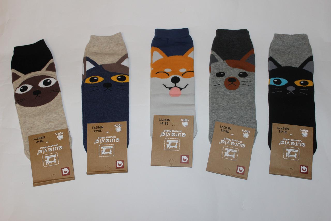 Шкарпетки з малюнком Мордочки тварин Розмір 38 - 41