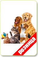 Товары для животных в розницу
