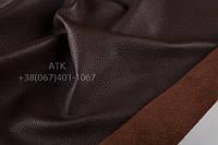 Флотар коричневый