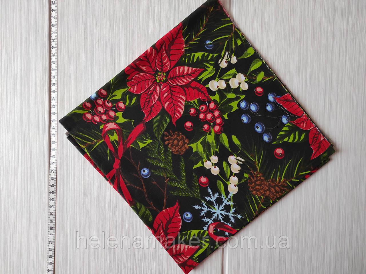 Новогодняя ткань Рождественник и елочные веточки на черном фоне 50*50 см