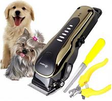 Професійна Машинка для Стрижки (Грумінгу) Кішок і Собак Gemei GM-6063 Мережа, Акумулятор