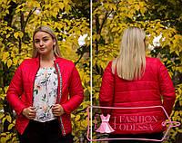 Женская красная куртка утепленная 44-46 46-48 48-50,50-52 52-54,54-56, фото 1