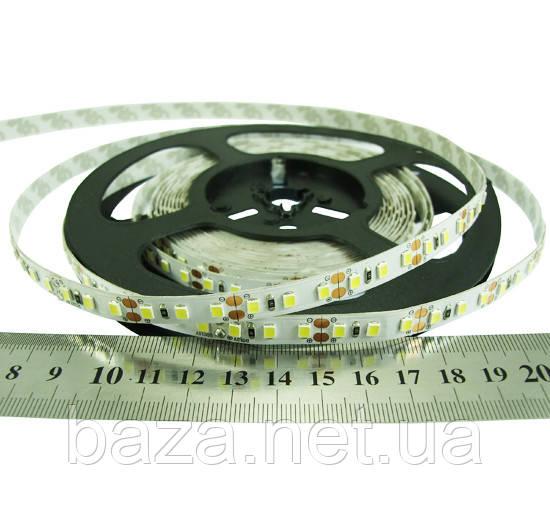 Светодиодная лента 2835-120-IP33-Y-8-24 RN08C0TC-B e-pcb (10881)