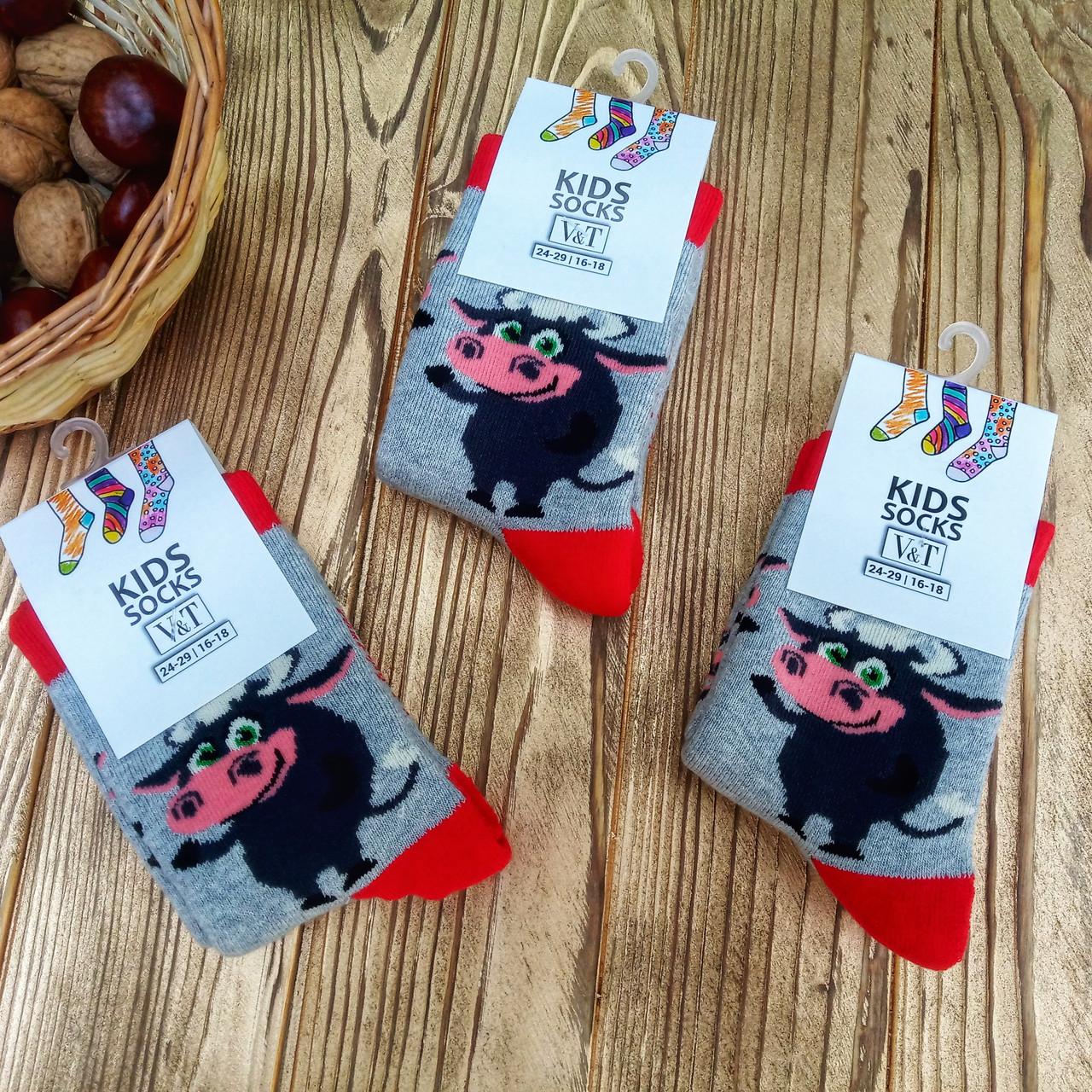 """Детские махровые носки V&T socks/Хмельницкий с рисунком """"Бычек"""" 18-20 (5-7 лет)"""