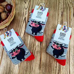 """Детские махровые носки V&T socks/Хмельницкий с рисунком """"Бычек"""""""