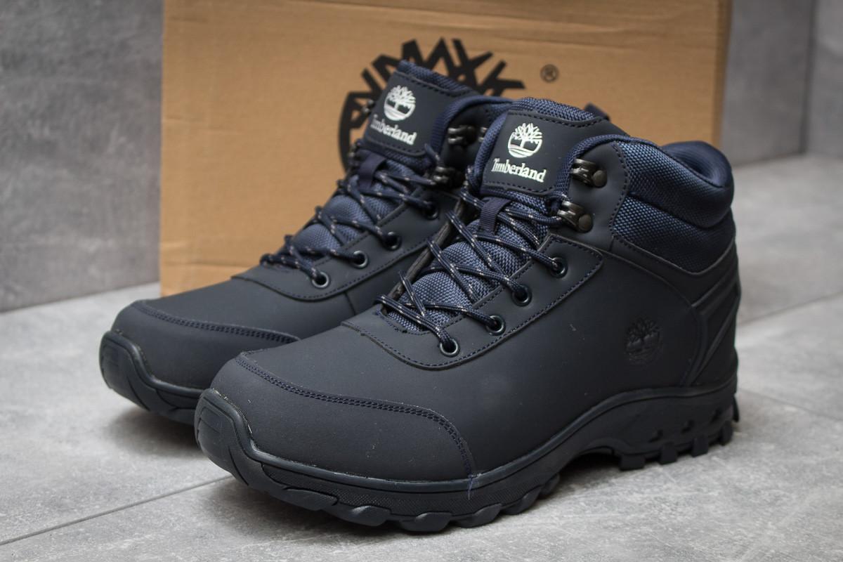 Зимние мужские кроссовки 30052 ► Timberland Canard Oxford, темно-синие . [Размеры в наличии: 41,46]