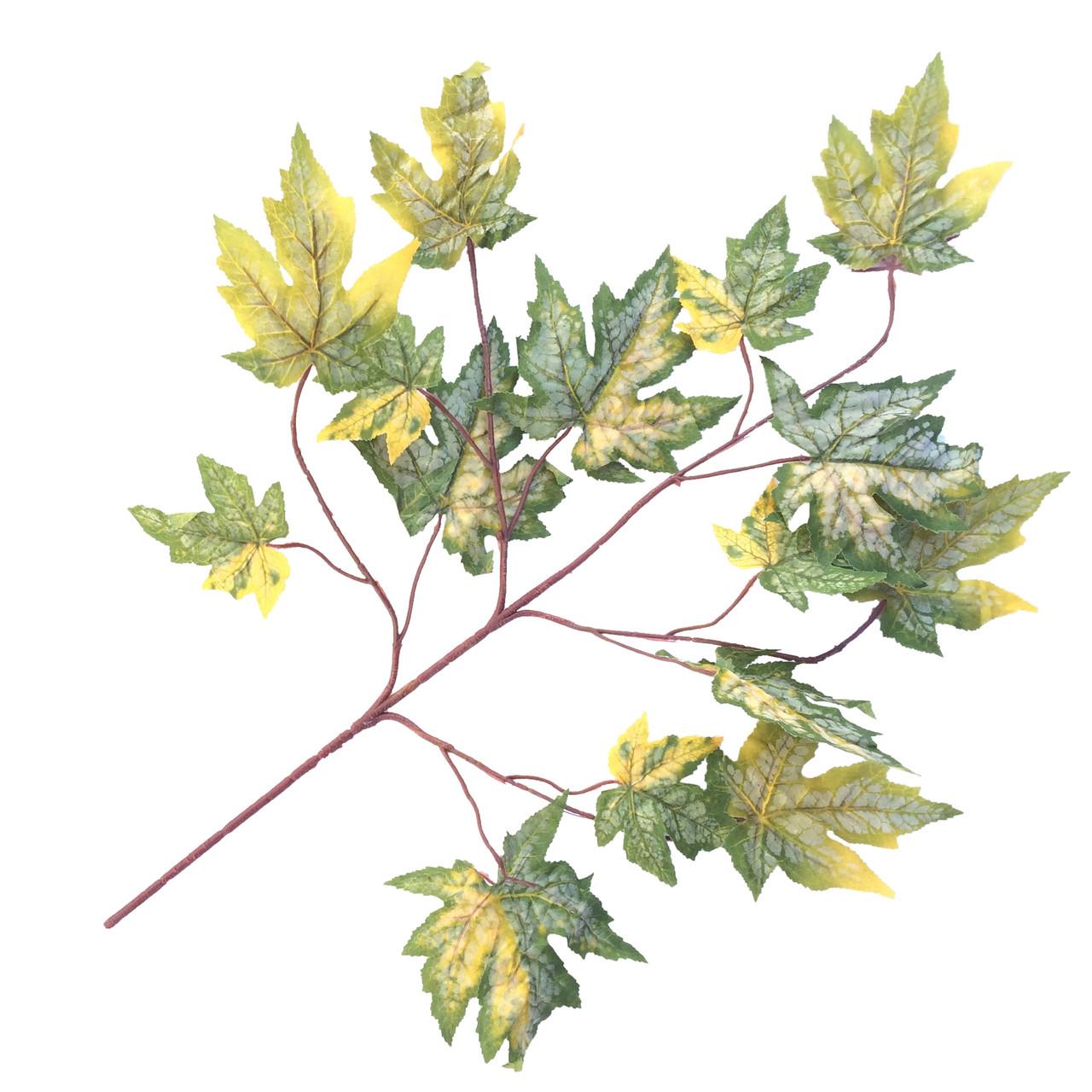 Ветка клена желто-зеленого  68 см (6 шт в уп)