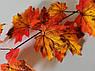 Искусственная зелень. Ветка осеннего клёна, большая рыжая., фото 2