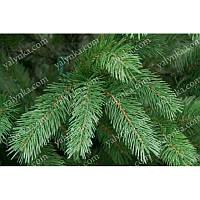 Ёлка, ель искусственная литая 1.8м Буковельская, искуственные елки, сосна, магазин ёлок, новогодняя елка, сосна на новый год