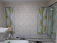 Небольшие раздвижные двери для шкафа с рисунком