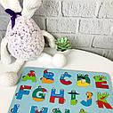 Дерев'яний англійський алфавіт кольоровий, англійська абетка, різнокольорова, пазл Алфавіт English для дітей, фото 3