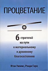 Книга Процвітання. Автор - Ітан Вілліс, Ренді Гарн (Попурі)