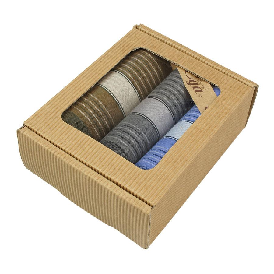 Подарунковий набір смугастих носових хусток для чоловіків Ega 3 шт CH-796/3 С