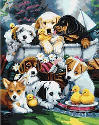 """Картина по номерам """"Сграя щенков"""" Сложность: 1 (щенки, собаки, собачки, много щенков)"""