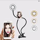 Кольцевая светодиодная лампа со штативом, подсветка для селфи, набор блогера Professional Live Stream, фото 3