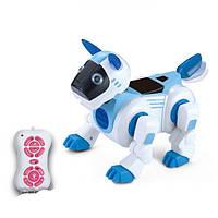 Собака робот Ки-ки на радиоуправлении, 2079