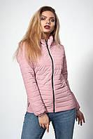 Женская короткая батальная куртка осень-весна темная пудра размеры  50,54,56, фото 1