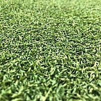 Штучна трава для тенісу 12 мм ширина 4 м CCGrass Green E 12 (исуственный газон в рулонах), фото 5