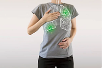 Дыхательная система, грипп, простуда, пневмония, бронхит, синусит, гайморит