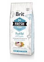 Cухой корм для собак крупных пород Brit Fresh Fish & Pumpkin Adult Large свежая рыба и тыква / 12кг