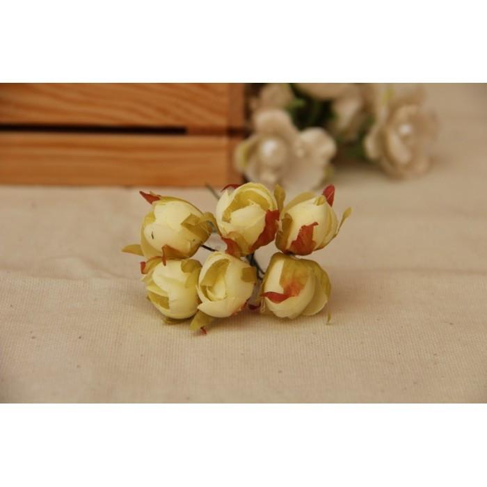 Тюльпани , айворі 60 шт