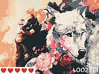 Картина по номерам Девушка и волк, цветной холст + лак, 40*50 см, без коробки Barvi