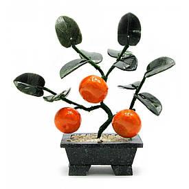 Дерево мандарин (3 плоду)(18х19х7 см)