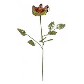 Роза бронзова (20 см)