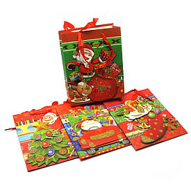 """Подарунковий Пакет з аплікацією """"Новий рік"""" (12 шт/уп)(23х18 см)"""