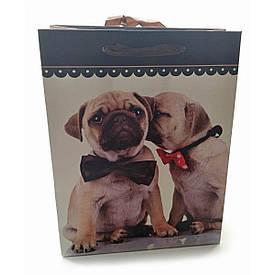"""Пакет подарунковий картонний """"Кішки і Собаки"""" (18х23х8 см)"""