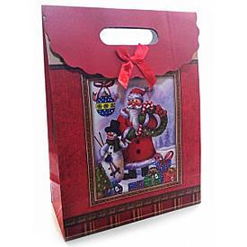 """Пакет подарунковий картонний """"Новорічний"""" (15х20х6 см)"""