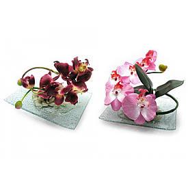 Квітка орхідеї на скляній підставці (20х15см)