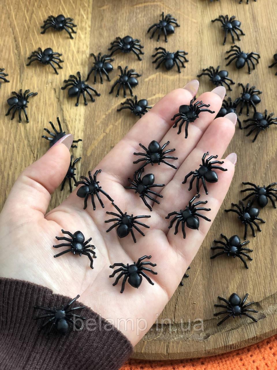 Павуки. Набір з 50 павуків.