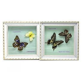 Метелики в рамці (21х21х3 см)