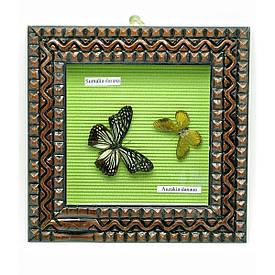 Метелики в рамці (22х22х4 см)