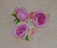 Головка розы мал  Д.Остина(английская) сиреневая