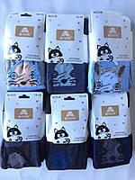 """Колготки детские зимние махровые """"Алия"""" размером 92-164  , фото 1"""