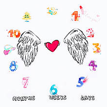 Фотопеленка / фотофон 12 месяцев для первых фотосессий малыша Baby Pictures крылья (ВР-21427)