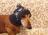 Зимняя шапка для маленькой собаки,шапка для таксы,шапка для собаки до 10 кг, фото 6