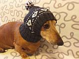 Зимняя шапка для маленькой собаки,шапка для таксы,шапка для собаки до 10 кг, фото 8