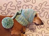 Шапка для собаки,шапка для таксы,одежда для домашних животных, фото 2